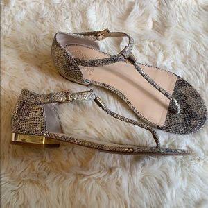 Vince Camuto Halana snake print w/ gold accents